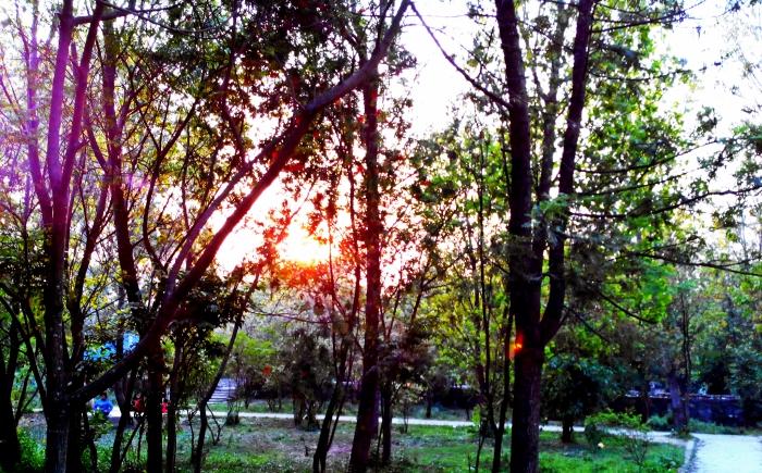 Sunset seen from UN Park